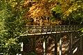Le pont rustique sous un feuillage dorée (22784267416).jpg