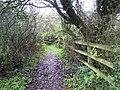 Leafy path, Camphill - geograph.org.uk - 1579832.jpg