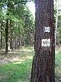 Lesnické značky poblíž Leontýnského zámku.jpg