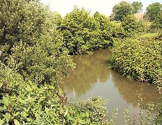 Liane (river) river in France