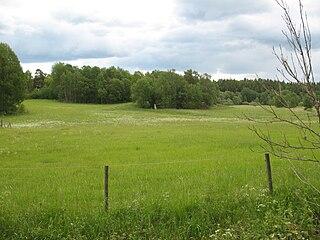 Lingsberg Runestones