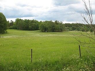 Lingsberg Runestones - Image: Lingsberg meadow