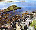 Little Britain^ From nr. Ard-dhubh, Applecross. - panoramio.jpg