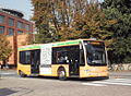 Lodi autobus LINE.JPG