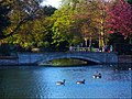 Lower Pond, Carshalton, London Borough of Sutton (2) - Flickr - tonymonblat.jpg