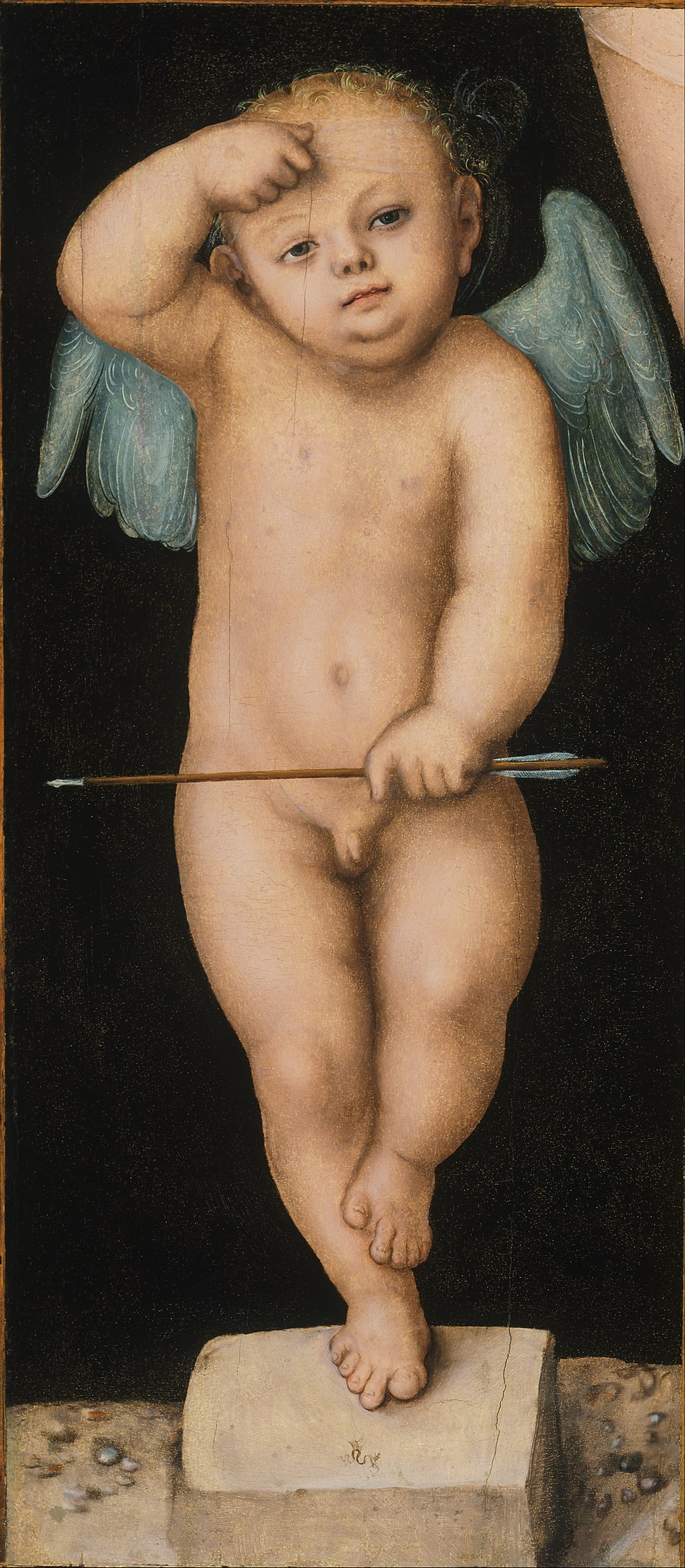 Lucas Cranach the Elder, German (active Vienna, Wittenberg, and Weimar) - Cupid - Google Art Project.jpg
