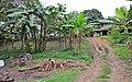 Lungga,the mountain way - panoramio.jpg