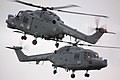Lynx - RIAT 2009 (3770160104).jpg