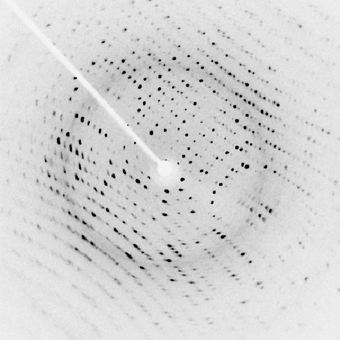 Image of X-ray diffraction pattern from a protein crystal. Lysozym diffraction.png