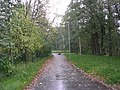 Mähe tee - panoramio - Aulo Aasmaa (1).jpg