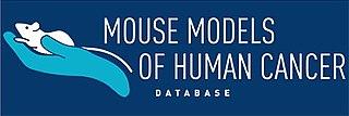 Mouse Models of Human Cancer database