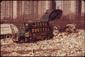 "MUNICIPAL DUMP IN THE BRONX REACHES ALMOST TO THE DOORSTEP OF ""CO-OP CITY"" (BACKGROUND). ALTHOUGH DUMP HAS ALREADY... - NARA - 549751.tif"