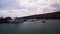 Maalaea harbour - Flickr - exfordy.jpg