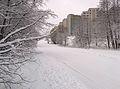 Maardu winter3.jpg
