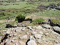 Macomer - Area archeologica di Tamuli (25).JPG