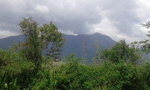 Mudumalai National Park - mudumalai tiger reserve