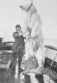Medinaceli 1910.png