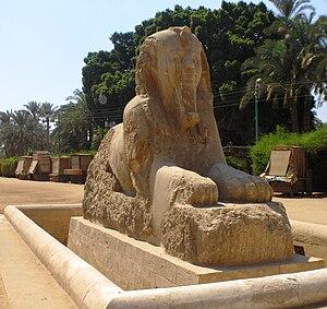 Sphinx of Memphis - Memphis - Museum - Sphinx of Memphis