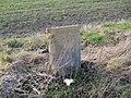 Milestone with a bench mark - geograph.org.uk - 1722876.jpg