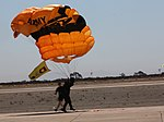 Military Parachute Teams' performance 141004-M-JD595-419.jpg