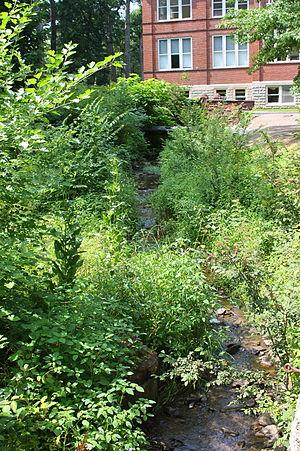 Miller Run - Miller Run looking upstream