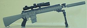 Mk 12 Special Purpose Rifle