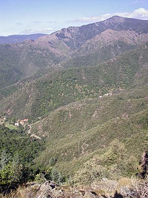 Mont Aigoual - East face of Mont Aigoual