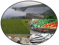 Montage of fish, cattle, dump trucks, fruit, rice farming, and dam.jpg
