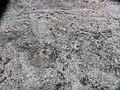 Munkedal Lökeberg foss 6-1 ID 10154500060001 IMG 0348.JPG