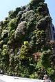 Muro ecológico.JPG
