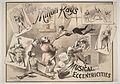 Musical eccentricities - Weir Collection.jpg