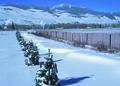 NRCSWY02016 - Wyoming (6897)(NRCS Photo Gallery).tif