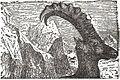 NSRW Head of Alpine Ibex.jpg