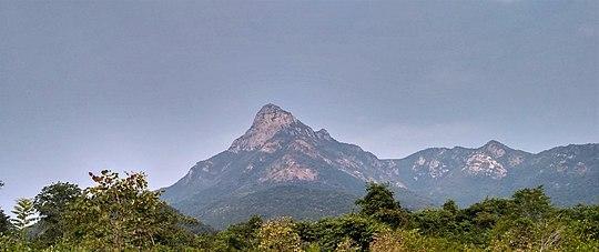 Nagalapuram - Wikipedia