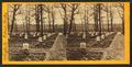 National cemetery, Arlington, Va, by Bell & Bro. (Washington, D.C.) 4.png