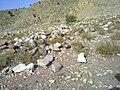 Navidhand Valley , Khyber Pakhtunkhwa, Pakistan - panoramio (20).jpg