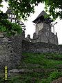 Nevitsky Castle 08.jpg