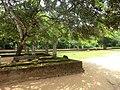 New Town, Polonnaruwa, Sri Lanka - panoramio (2).jpg