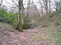 Norton Camp defences - geograph-2847806.jpg