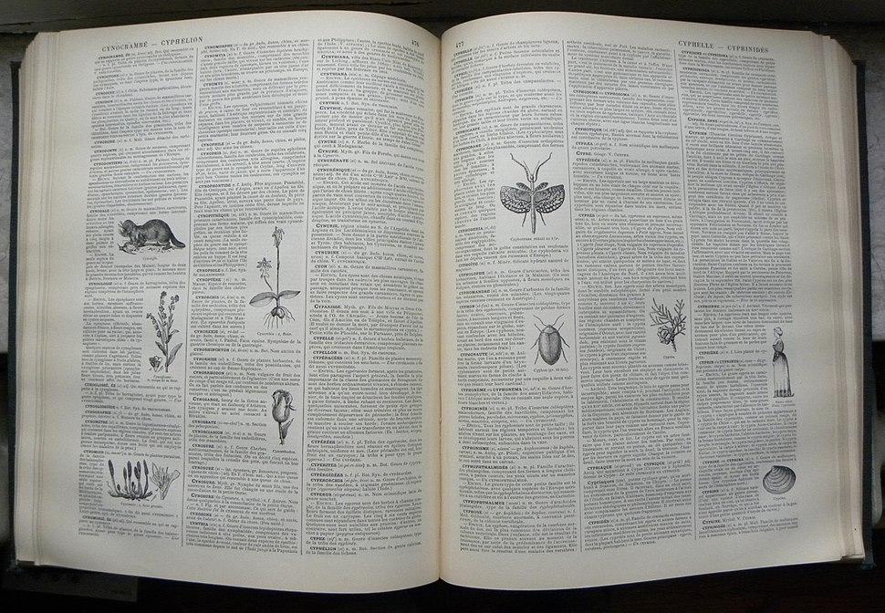 Nouveau Dictionnaire Larousse page