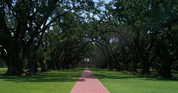 Oak Alley Plantation 01.jpg