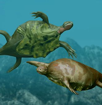 Odontochelys - Life reconstruction as a marine reptile, a controversial ecological hypothesis