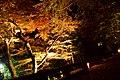 Ohara 2008-11-25 night (3262029876).jpg