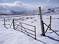 Old Gate and New Fence - geograph.org.uk - 744574.jpg