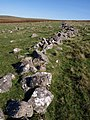 Old wall near Hen Tor - geograph.org.uk - 1530164.jpg