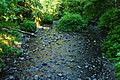 Oneonta Gorge Falls (30799962780).jpg