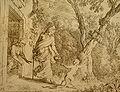 Ovid Met 5 - Star Lizard - Johann Wilhelm Bauer 1659.jpg