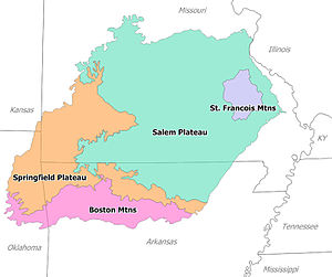 Northwest Arkansas - The split between the Springfield Plateau and the Boston Mountains occurs in the center of Washington County, Arkansas very near Fayetteville. The rough, mountainous terrain south of Fayetteville is the Boston Mountains while the more-habitable Springfield Plateau contains the cities of Springdale, Bentonville and Rogers to the north.