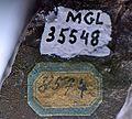 Ozocérite numéro MGL35548.jpg
