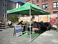 PARK(ing) Day Seattle 2009 - 05.jpg